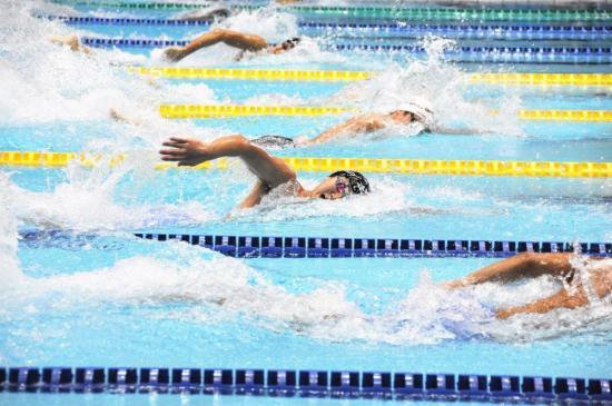 水泳2.jpg