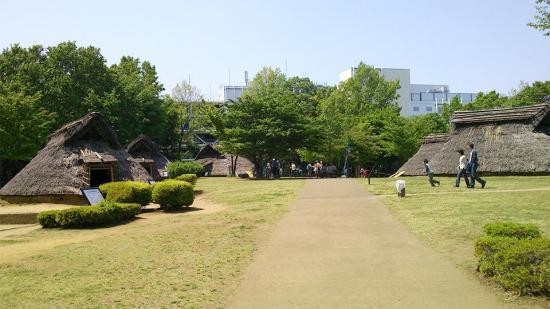 大塚歳勝公園1.jpg